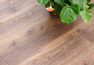Vertigo Trend Wood Registered Emboss